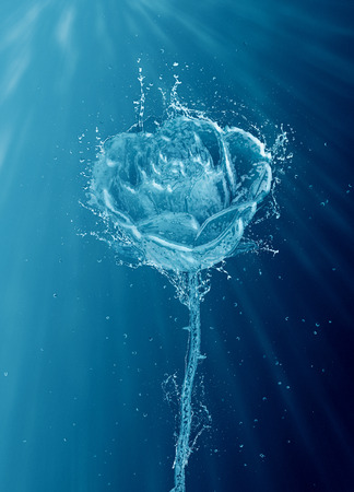Fine art water splash rose on a blue background with rays of penetrating sunlight and copy space for an underwater effect