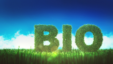 BIO sign of green letters made of greenery, on the ground with fresh grass, viewed from low angle against blue sky. Environment ecology concept of biofuel technologies. 3d Rendering.