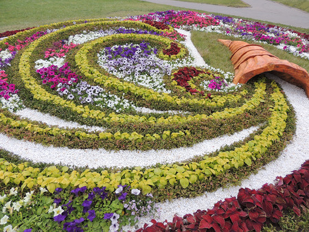 svisloch: Floral flowerbed in the Park on the waterfront of the river Svisloch in Minsk