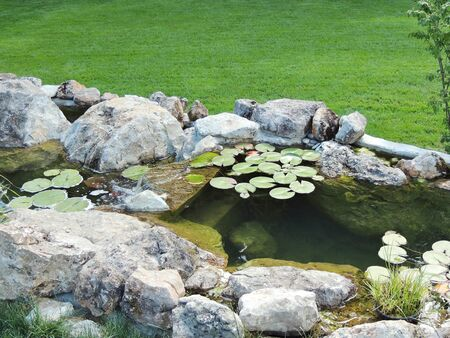streamlet: Park design. Park stream with lilies on the water.