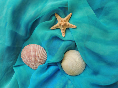 pareo: Seashells and starfish on turquoise beach pareo textiles. Summer vacation time.