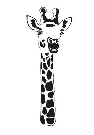 body part: Giraffe black contour of the body part