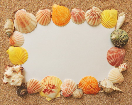 time frame: Marine frame with sea shells summer vacation time
