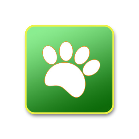 Paw print animal white in green square