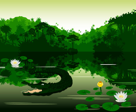 cascade mountains: Vector Illustration Tropical river with crocodile Illustration