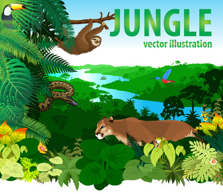 rainforest jungle with different animals