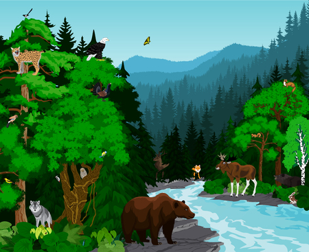 magpie: vector evening in beautiful mountains forest with animals