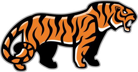 sumatran: tiger mascot illustartion