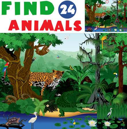 Illustration find 24 rainforest animals 向量圖像