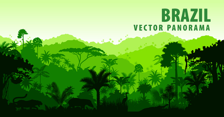 panorama met Jungle Rainforest - Brazilië, Zuid-Amerika Vector Illustratie