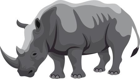 naturalist: african rhinoceros Illustration