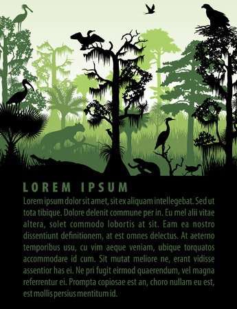 regenwoud wetland silhouetten in zons ondergang design template Stock Illustratie
