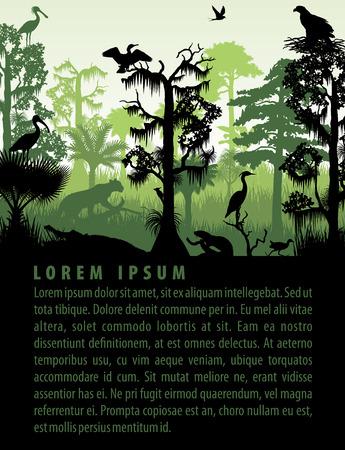 rainforest wetland silhouettes in sunset design template