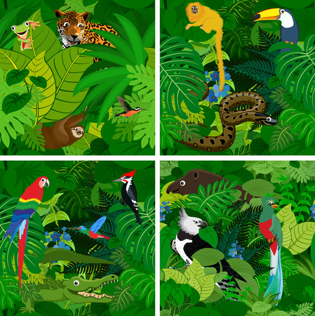 set of Seamless vector tropical rainforest Jungle background with kids animals  イラスト・ベクター素材