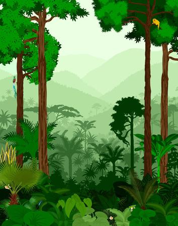 vertebrate: Rainforest vector illustration. Vector Green Tropical Forest jungle