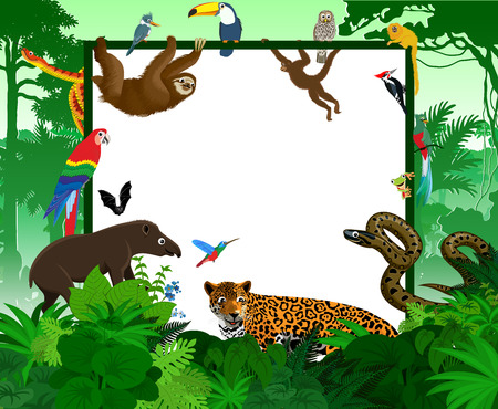 animals frame: frame with tropical jungle cartoon animals Illustration