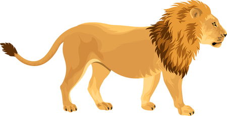 man eater: lion Illustration