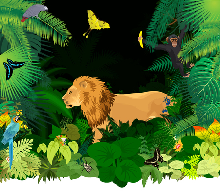 african rainforest jungle with lion, parrots, monkey and different animals