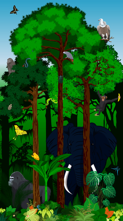 raptor: Vector Illustration african tropical jungle rainforest with animals Illustration