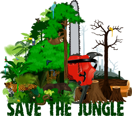 Deforestation  jungle vector illustration. Vector Rainforest destroyed with animals.