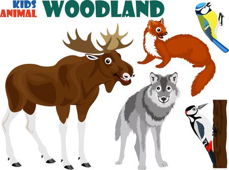 marten: vector set of cute woodland kids animals