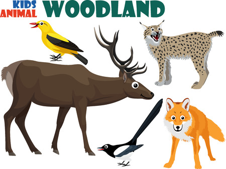 magpie: vector set of cute woodland kids animals