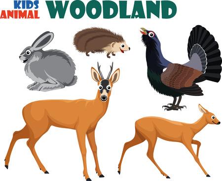 heather: vector set of cute woodland kids animals