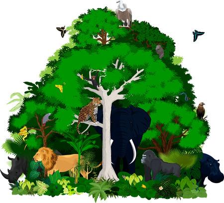 ilustración vectorial de la selva africana. Bosque tropical verde del vector con los animales