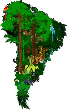 Dieren en bloemen Zuid-Amerika - vectorillustratie