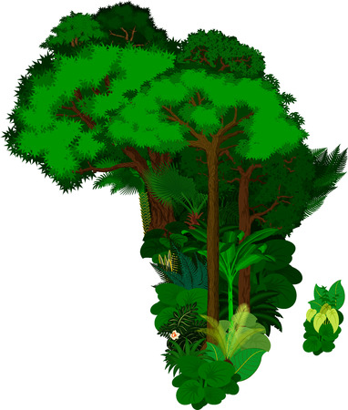 country nigeria: floral Africa - vector illustration Illustration