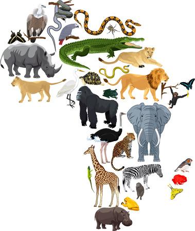 animals Africa - vector illustration Illustration