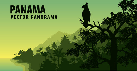 vector panorama of Panama with jungle raimforest with harpy eagle Illusztráció
