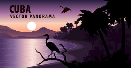 キューバのビーチとヘロンのベクトル パノラマ