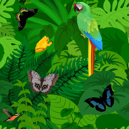 Seamless vector tropical rainforest Jungle background with parrot and butterflies and frog