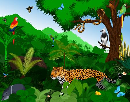 Foresta pluviale con illustrazioni vettoriali di animali. Vettoriale Gialla verde foresta tropicale con pappagalli, jaguar, tapir, peccary, arpy, scimmia, motmot, anaconda e farfalle.
