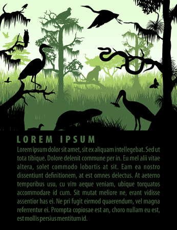 Vector rainforest wetland silhouettes in sunset design template with heron, otter, python, ibis. Puma, eagle and owl