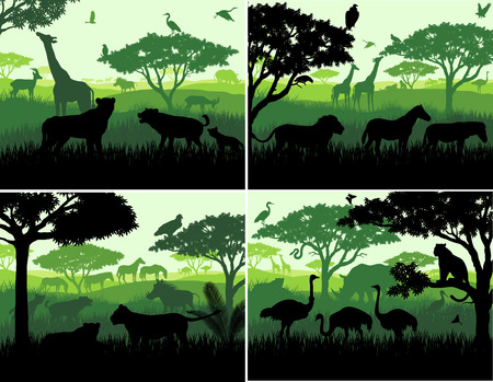 lioness: Set of Vector illustrations of african savannah safari landscape with wildlife animals silhouettes in sunset design templates