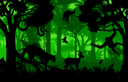 Vector evening indonesian tropical rainforest Jungle background with clouded leopard, gazelle, python, paradise bird and orangutan Vetores