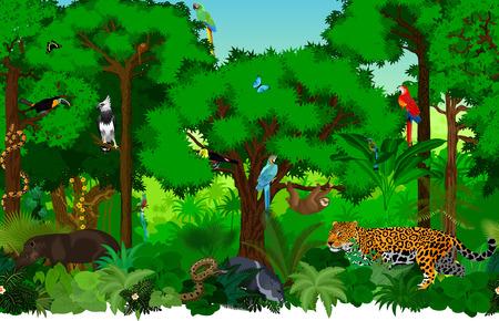 ベクトル動物とシームレスな熱帯雨林ジャングルの背景パターン イラスト