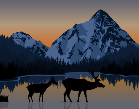 rockies: Vector blue morning in mountains lake with couple of deers