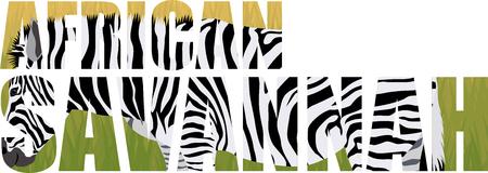 tanzania: Vector zebra illustration