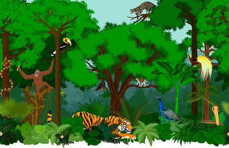 Vector asian seamless tropical rainforest Jungle background pattern illustration with animals