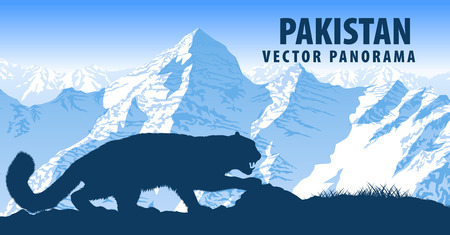 vector panorama of Pakistan with mountains snow leopard Stock Vector - 85171523