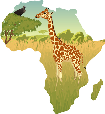 kenya: African Savannah with giraffe and eagle vulture vector illustration. Illustration