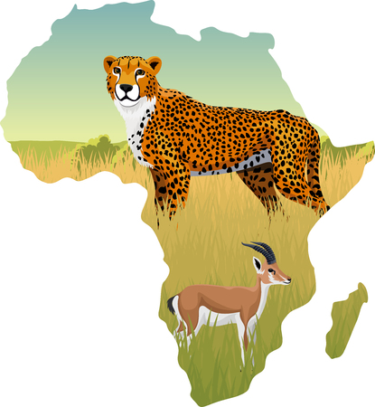 African savannah with cheetah and persian gazelle impala - vector illustration