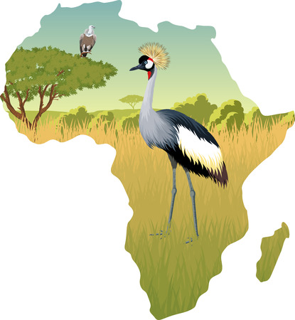 African savannah with crowned crane and eagle vulture - vector illustration Illustration