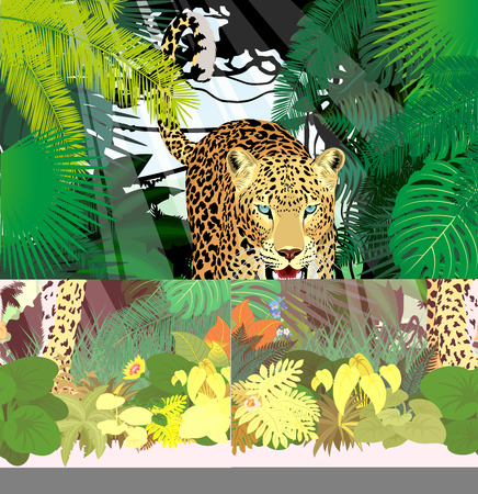 vector isolated leopard or jaguar in jungle rainforest Illustration