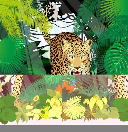 vector isolated leopard or jaguar in jungle rainforest Stock Vector - 88599606