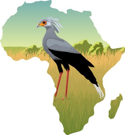 African savannah with pet bird. Illustration