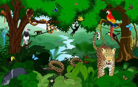 Rainforest with animals vector illustration. Vector Green Tropical Forest jungle with parrots, jaguar, boa, peccary, harpy, monkey, frog, toucan, anaconda and butterflies. 版權商用圖片 - 89414476